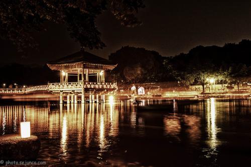 miasto Nara nocą